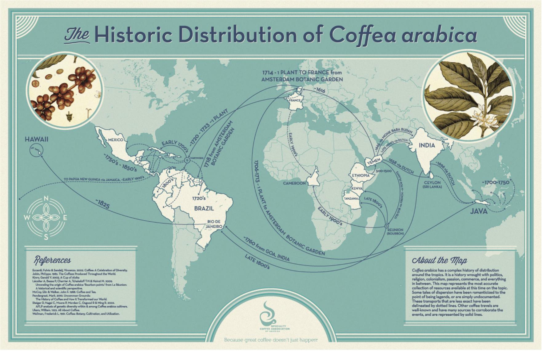 Hur kaffe och kaffeträdet spreds i världen