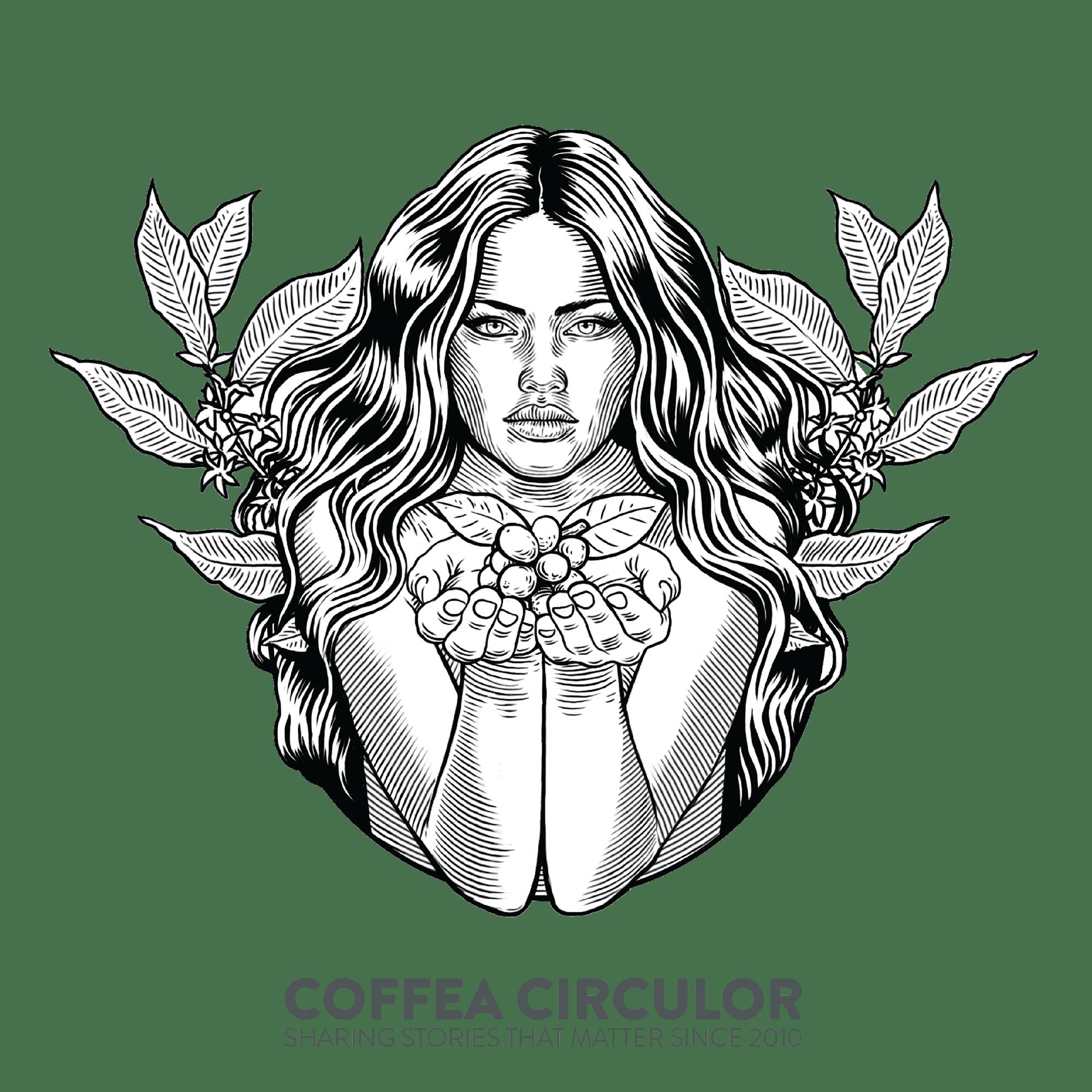 Kaffeprovning Länder och Plantager med kaffebönor från Coffea Circulor